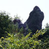 Экологические туры